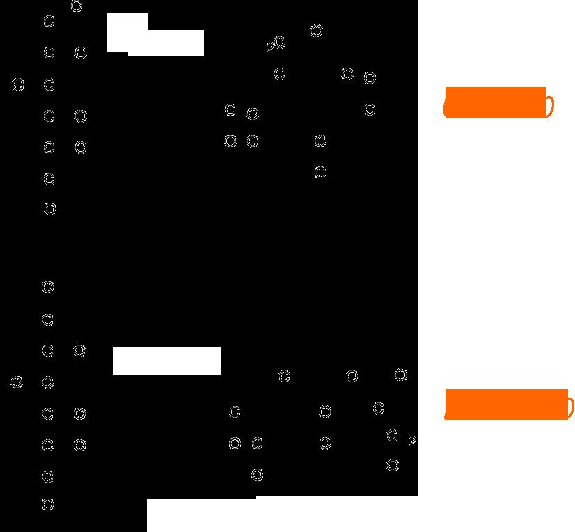 glucosio fruttosio
