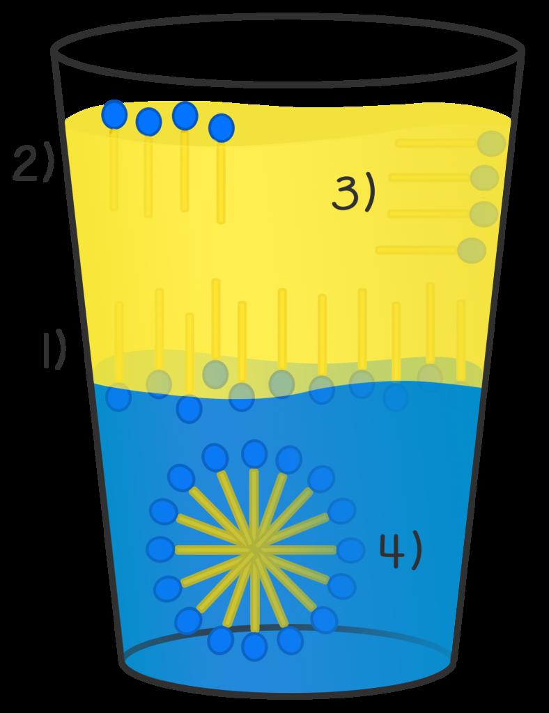 micelle; tensioattivi; emulsionanti; tensione interfacciale;